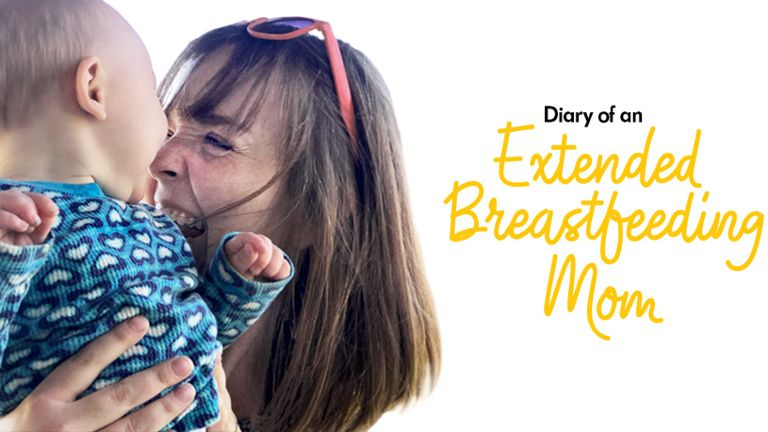 "Mom holding baby up to her face and smiling with words ""Diary of an Extended Breastfeeding Mom"" next to the image"