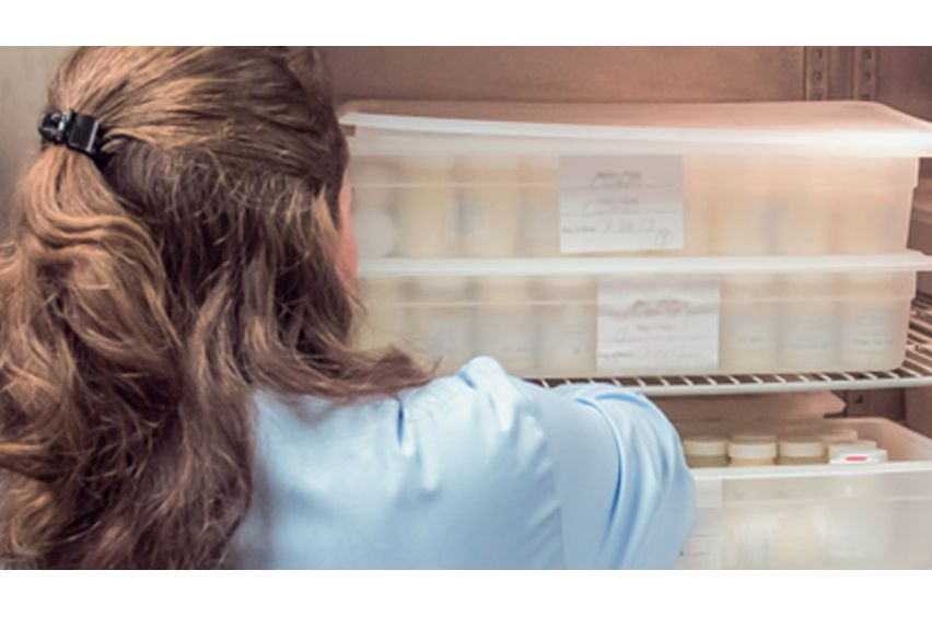 woman in blue handling breast milk storage containers organized in large refrigerator in professional environment